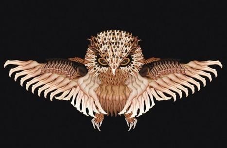 PHOTO: Artist creates image of owl using nude bodies - Metro.us | peanuts gallery | Scoop.it