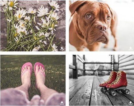 7 colecciones de fotografías libres de derechos y con alta calidad | Desarrollo de Apps, Softwares & Gadgets: | Scoop.it