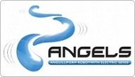 The Angels Project : HomePage | Innovation in Oceanography | Scoop.it