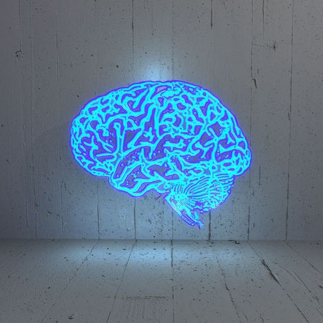 Why IQ matters more than grit | critical reasoning | Scoop.it