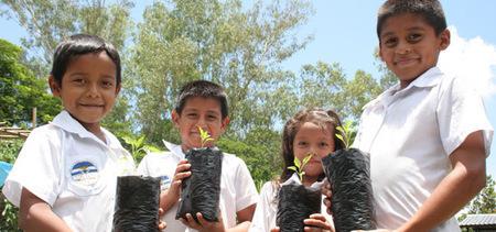 Alimentación escolar| FAO | Organización de las Naciones Unidas para la Alimentación y la Agricultura | Nutrición para ti, Nutrición para todos. | Scoop.it