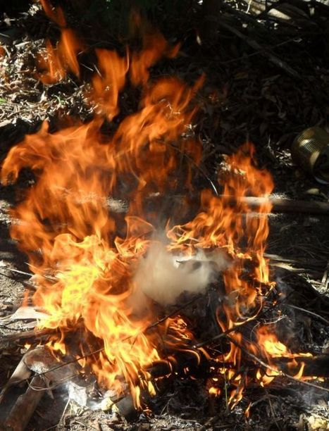 Flames rip through boys ranch in Spanish Fork Canyon | Woodbury Reports Inc.(TM) Week-In-Review | Scoop.it