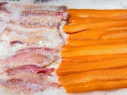 President Obama Announces Initiative To Tackle Seafood Fraud & Illegal Fishing | Aquaculture Directory | Aquaculture | Scoop.it