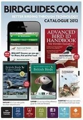 BirdGuides 2012 Catalogue   Texas Coast Living   Scoop.it