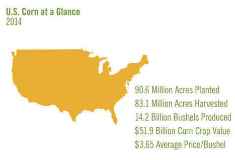 US: NCGA's 2015 'World of Corn' report details corn crop statistics | MAIZE | Scoop.it