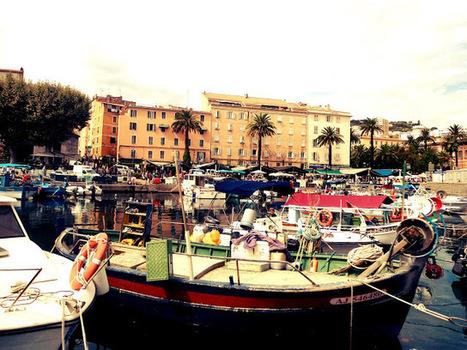 LES PETITS PARADIS DE MANON: Ajaccio, Corse | Corse | Scoop.it