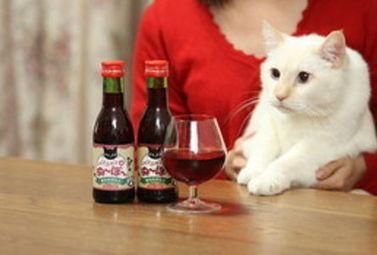Partager un vin avec votre chat, c'est désormais possible ! - Magazine du vin - Mon Vigneron | Actualités du Vin | Scoop.it