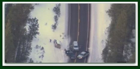 Former Sheriff's Deputy: Lavoy Finicum Was Murdered 'For Sure' – BB4SP | Conservative Politics | Scoop.it