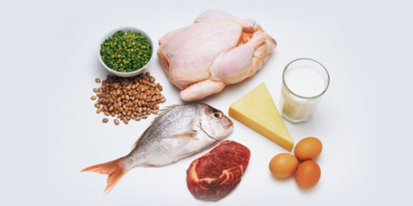 7 things you need to know about protein | Weight Loss and Health | Scoop.it