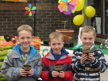 Budding young gardeners take up the sunflower challenge - Kincardineshire Observer | Sunflowers | Scoop.it