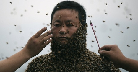 To Sell His Honey, Chinese Man Covers His Entire Body in Bees   Social media   Scoop.it