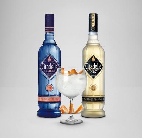 Citadelle Gin y Citadelle Réserve: Juntas Mejor | GinTonics | Scoop.it