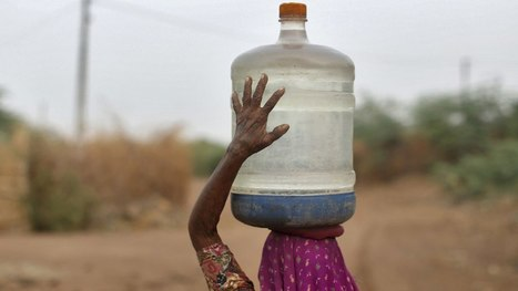 #India's worst #drought in 50 years is shutting down farms, hospitals, and schools 330 million affected #climate | Messenger for mother Earth | Scoop.it