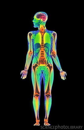 brief body scan meditation practice improves so. Black Bedroom Furniture Sets. Home Design Ideas