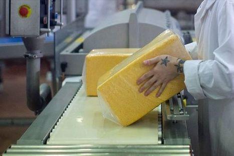 Saputo devient le plus important actionnaire de Warrnambool ... - LesAffaires.com | Industrie fromagère | Scoop.it