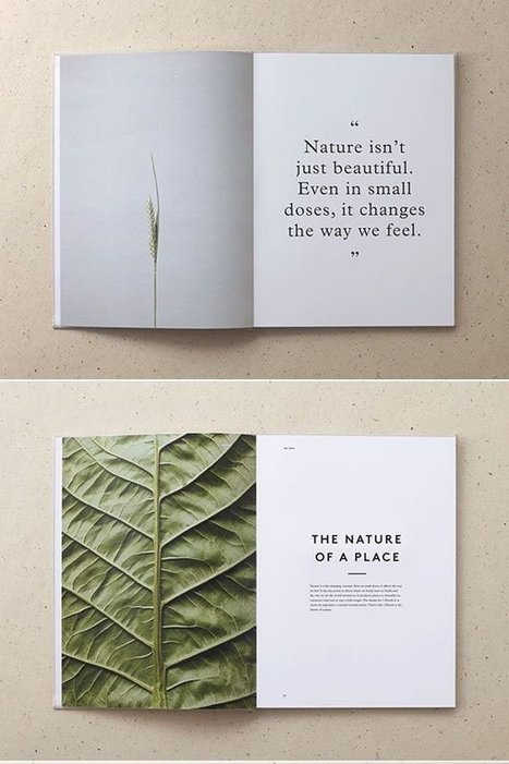 Minimalist Design: 25 Beautiful Examples and Practical Tips – Design School | Graphic Design and Muses | Scoop.it