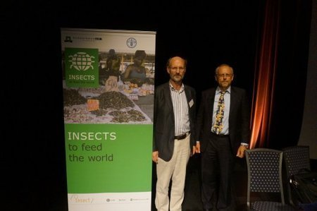 Insects as a tool for global food security | Interesting Insects | Scoop.it