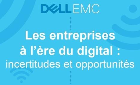 La transformation digitale, un enjeu majeur encore mal maîtrisé - Blog du Modérateur | Transition Digitale de l'Entreprise | Scoop.it