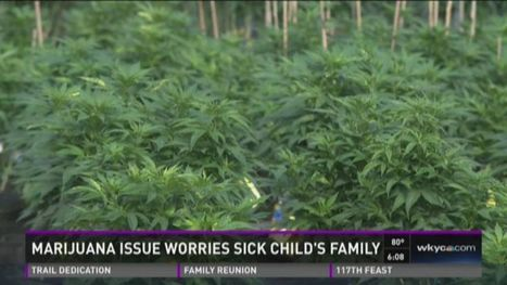Marijuana amendment worries sick child's family | How Cannabis Will Change the World! | Scoop.it