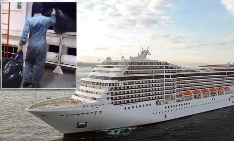 Videos show MSC Cruises crewman dumping trash into the ocean | All about water, the oceans, environmental issues | Scoop.it