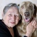 Zoothérapie et Alzheimer   Psychomotricité et Vieillissement   Scoop.it