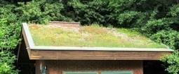 Toundra'box – une toiture végétalisée en kit | Conseil construction de maison | Scoop.it