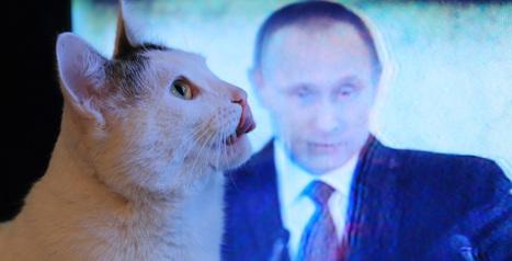 Чем теперь займется Володин?   Colta.ru   Octivizm (activism + optimism)   Scoop.it