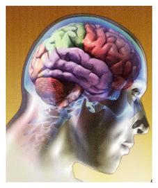 Psicología Cognitiva - Psicología | INTELIGENCIA GLOBAL | Scoop.it