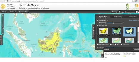 Suitability Mapper - WRI - Oil Palm Suitability Tool | Geoflorestas | Scoop.it