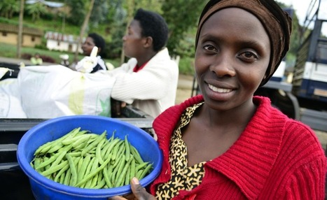 Africa: No Meaning to '7 Out of 10 Fastest Growing Economies Are in Africa' | Geography | Scoop.it