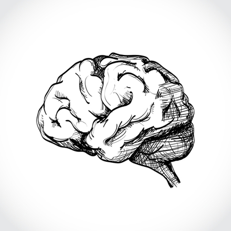 So much talk about 'the brain' in education is meaningless | Gentlemachines | Scoop.it