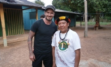 What could David Beckham's BBC film say about the Brazilian Amazon? | Ecuador | Scoop.it