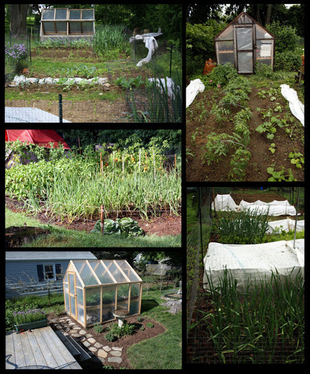 The Backyard Farming Connection: Homestead Highlight: Rob | Plan Your Plan | Scoop.it
