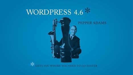 WordPress 4.6 est disponible : la liste des nouveautés - Blog du Modérateur | Mes ressources personnelles | Scoop.it