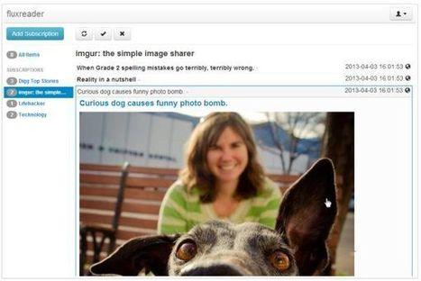 Fluxreader, una alternativa más para reemplazar a Google Reader | Las TIC y la Educación | Scoop.it