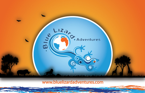Blue Lizard Adventures: The Continent with Huge Potential to Mesmerize