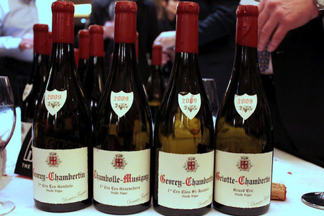 The Iron Chevsky Wine Blog: La Paulee San Francisco 2012 and the Impressive 2009 Red Burgundy | Wine website, Wine magazine...What's Hot Today on Wine Blogs? | Scoop.it