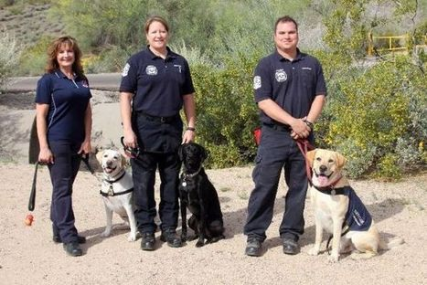 Fire department educates public on pet heat stroke awareness | Global Awareness & The World Around Us | Scoop.it
