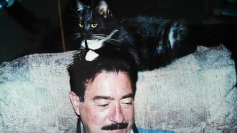 Touch of Catnip   catnipoflife   Scoop.it