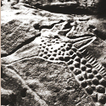 Bradshaw Foundation Rock Art Archive | The Thunderbolts Project | Scoop.it