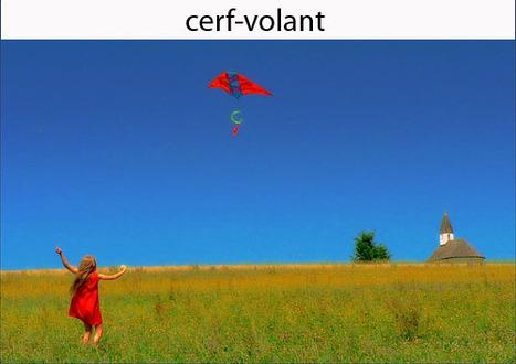 Cartes à télécharger gratuitement – Activité Elements Nature | Envie de Grandir | Montessori | Scoop.it