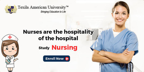 Nursing Specialties to Explore with a Bachelor's Degree in Nursing | Texila Health plus | Scoop.it