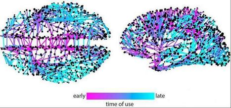 Twitter Meme Mapping Method Reveals #Neural #Networks for Higher Cognition When Applied to #Brain | Social Neuroscience Advances | Scoop.it