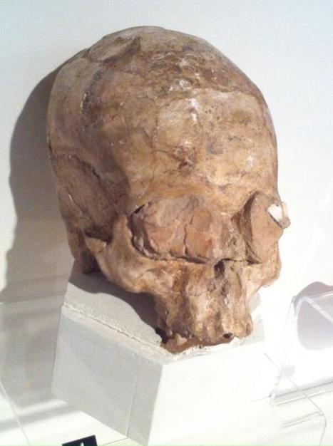 Twitter / HistoryNeedsYou: Neolithic skull with clay and ... | Neolithic | Scoop.it