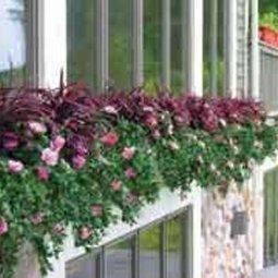 Permaleaf | Artificial Outdoor Plants | Scoop.it