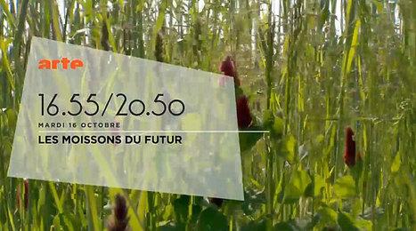 Ce soir sur ARTE : Les Moissons du futur - Comment on nourrit le monde ? - videos.arte.tv | Économie circulaire locale et résiliente pour nourrir la ville | Scoop.it