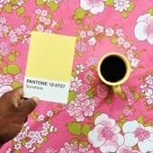 Real-World Hues Meet Their Pantone Partners in New Instagram Series | Raw File | Wired.com | ARTLearning | Scoop.it