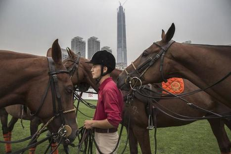 Inside China's Exclusive Polo Clubs | Cheval | Scoop.it