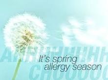Allergy Relief | Better Health Westchester | Scoop.it