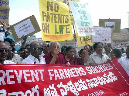 Haitian Farmers Burn Monsanto'Aid'Seeds | People Of Color Organize! @barackobama | GREGORY GMO | Scoop.it